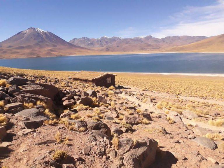 Lagunas Altiplánicas y Salar de Atacama