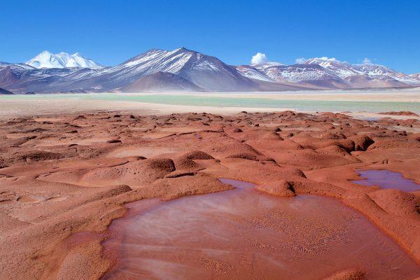 Piedras Rojas, Lagunas Altiplánicas Y Salar De Atacama