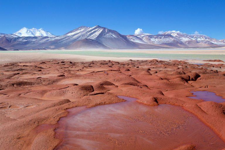 Lagunas Altiplánicas (Piedras Rojas) y Salar De Atacama