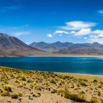 02 lagunas altiplanicas – sur del desierto