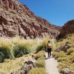 07 trekking